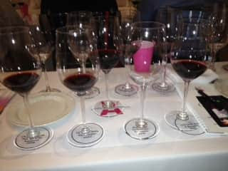 Argentian Wine Event Line Up