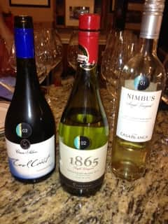 Wines of Chile Sauv Blanc