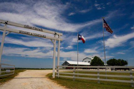 Texas Winery
