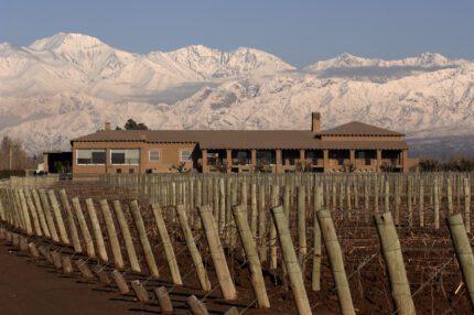 Winemakers in Argentina